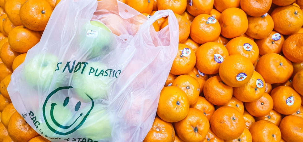 100% Biodegradable and Compostable Bags